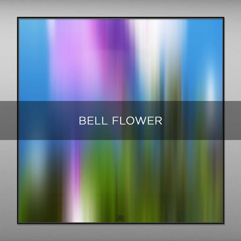 BELL FLOWER - QBX DESIGN QUADRI ASTRATTI